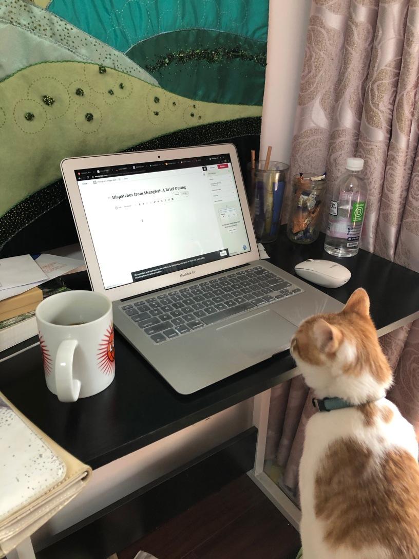 The Hannah Bureau hard at work